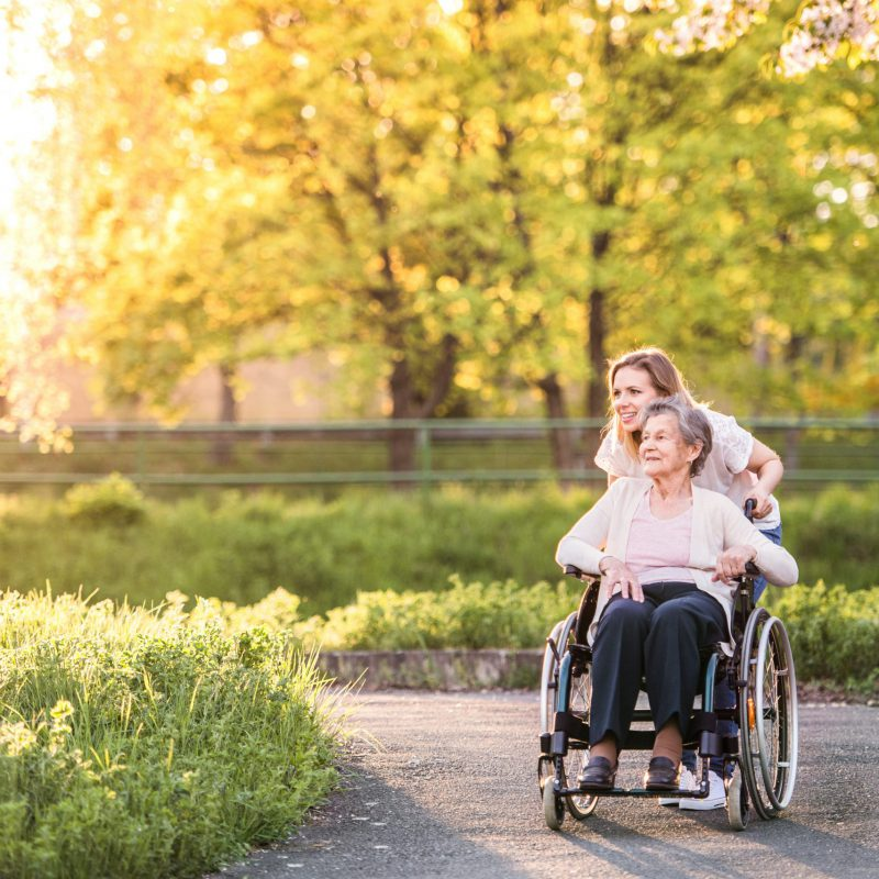 Elderly,Grandmother,In,Wheelchair,With,Granddaughter,In,Spring,Nature.